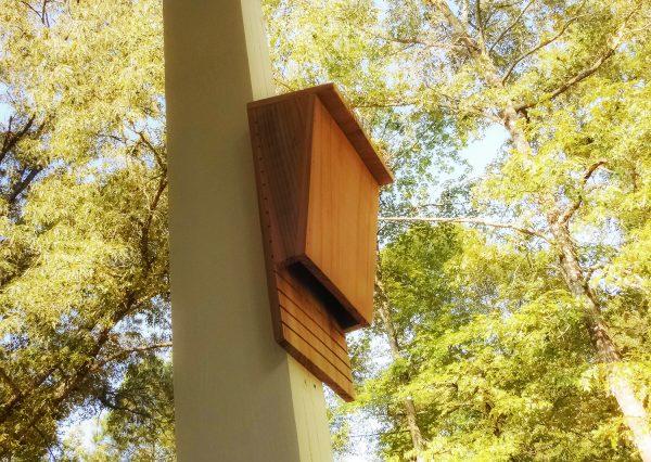 Bat house for sale