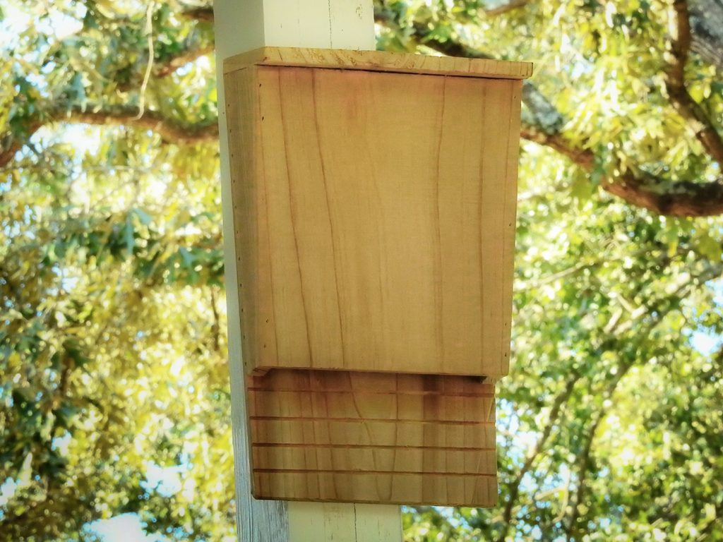 NatureZedge Single Chamber Bat House