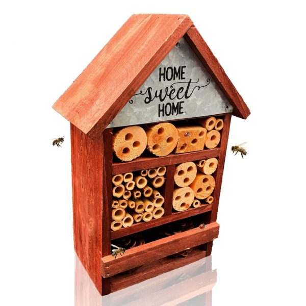 Insect House and Hotel