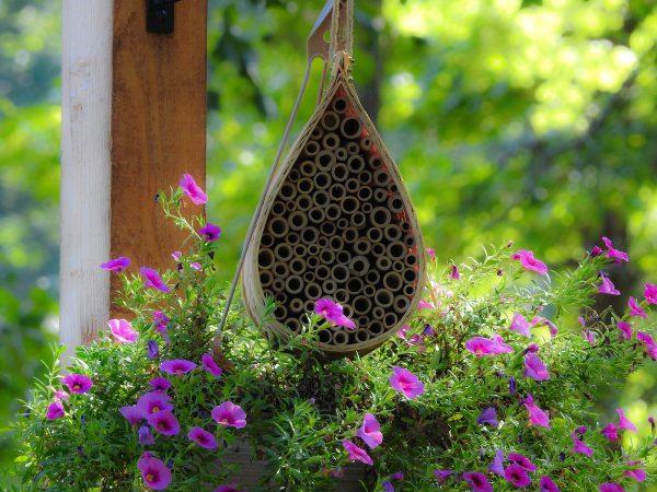 NatureZedge Mason Bee House for Pollination