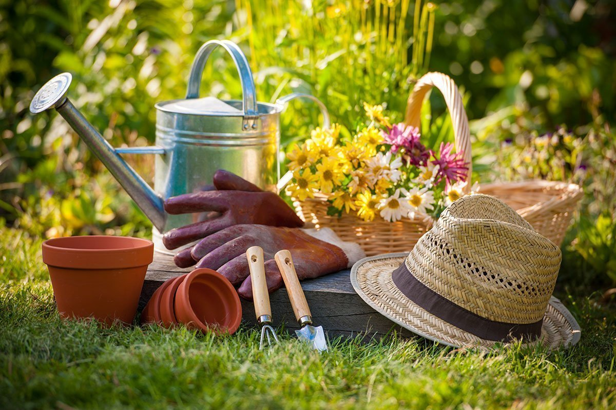 10 Amazing Spring Gardening Tips From Bloom To Harvest