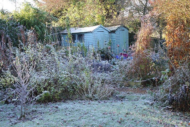 Spring planting tip number 2 clean up your garden