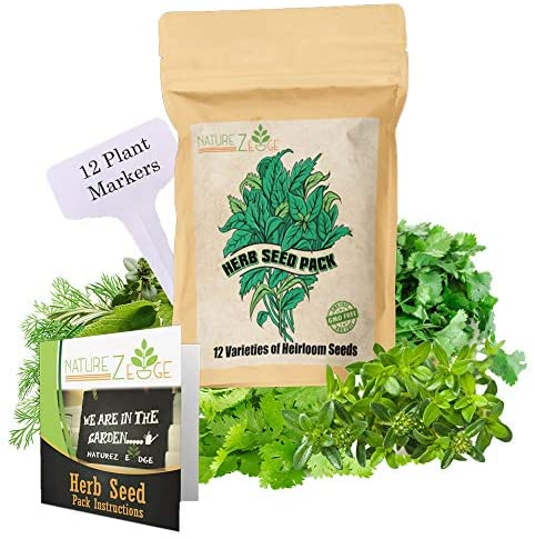 Marjoram Lavender Parsley 15 Culinary Herb Seed Vault 4500 Plus Seeds for Planting for Indoor or Outdoor Herbs Garden Heirloom and Non GMO Cilantro Mint Basil Rosemary Thyme Dill Chives