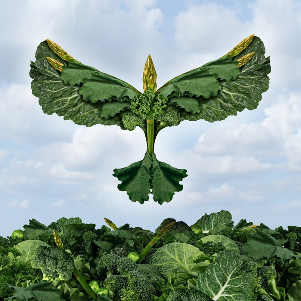 15 benefits of power greens