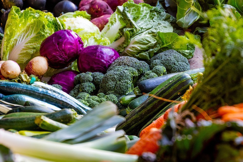 Growing Vegetables when to plant