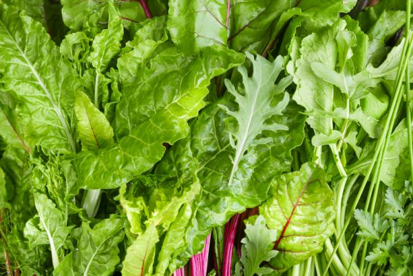 Heirloom Lettuce and Leafy Greens
