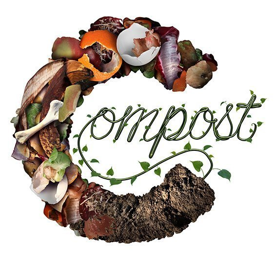How To Start Composting For Beginners