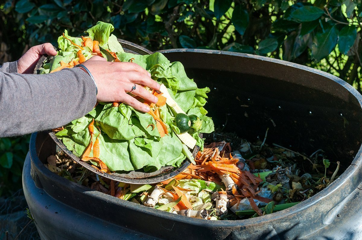 Here's The Dirt On Why Composting Is So Important