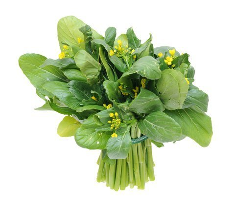 winter vegetable spinach