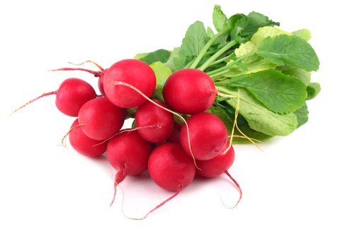 winter vegetable radishes