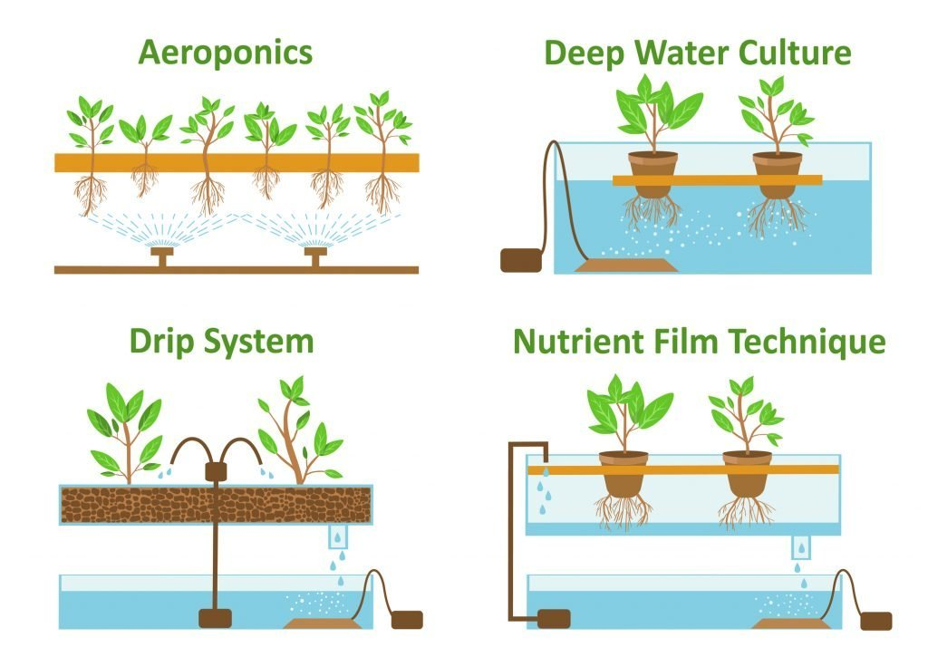 The six hydroponic systems