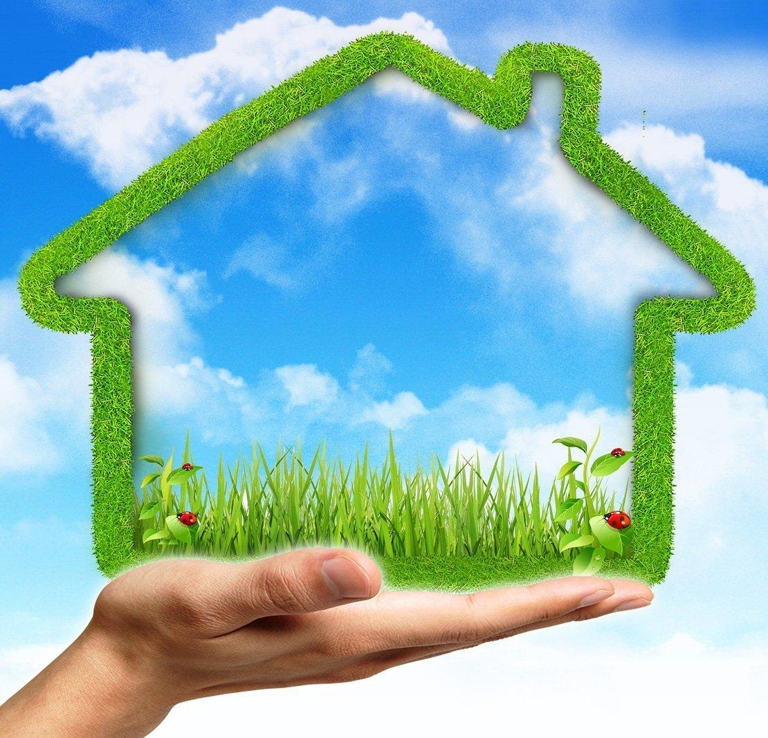 Eco Friendly Ways To Keep Garden Pests Away Naturally