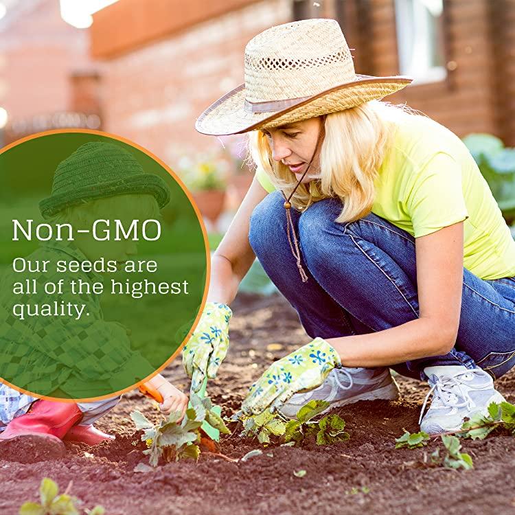 NatureZedge Open Pollinated, Non GMO seed Varieties