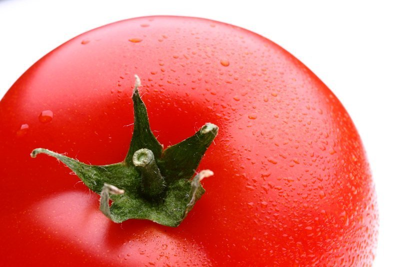 What Is The Ace 55 Tomato?