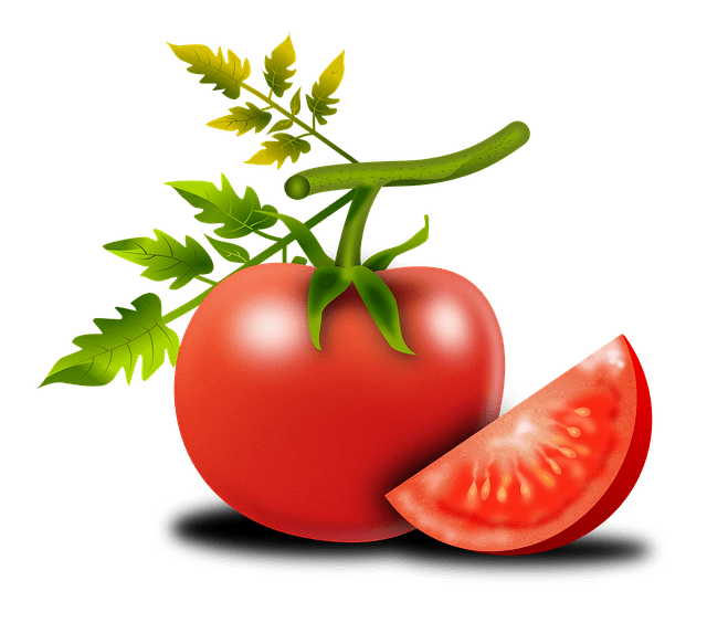 Growing The Ace 55 Tomato (Determinate) From Seed To Harvest