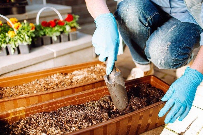 Balcony Vegetable Gardening For Beginners