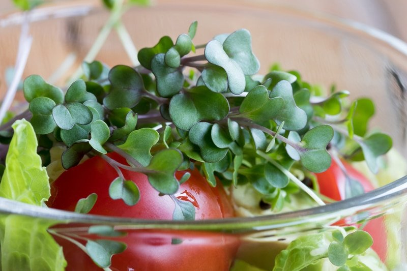 Ways to use microgreens in recipes