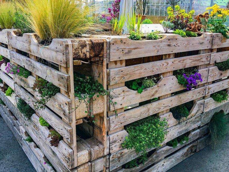 ideas for planting a vertical vegetable garden