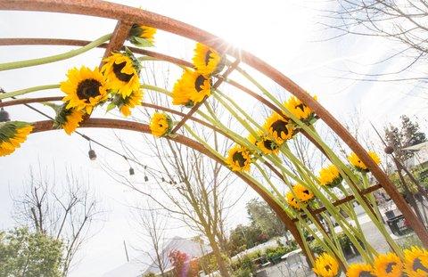 sunflower arch entryway