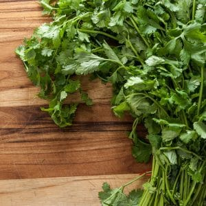 The Easy Guide To Growing Cilantro