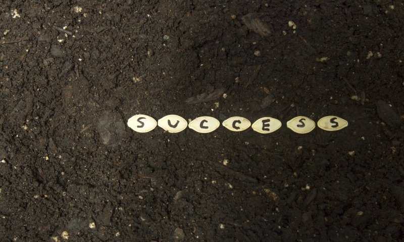 sow seeds of success with great rich soil