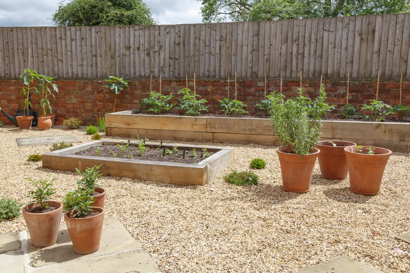 container herb gardens site selection